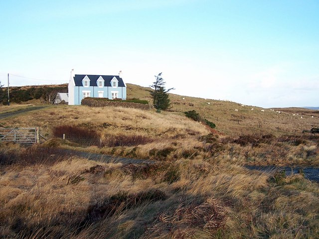 Cottage and sheep