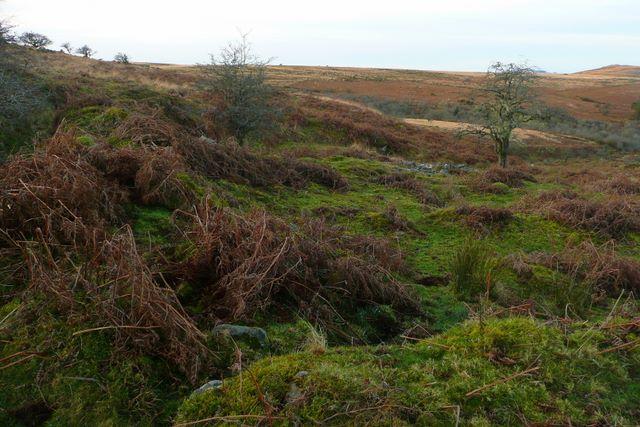 Moorland above Venford reservoir