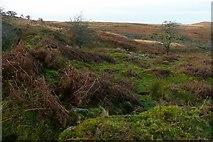 SX6870 : Moorland above Venford reservoir by Graham Horn
