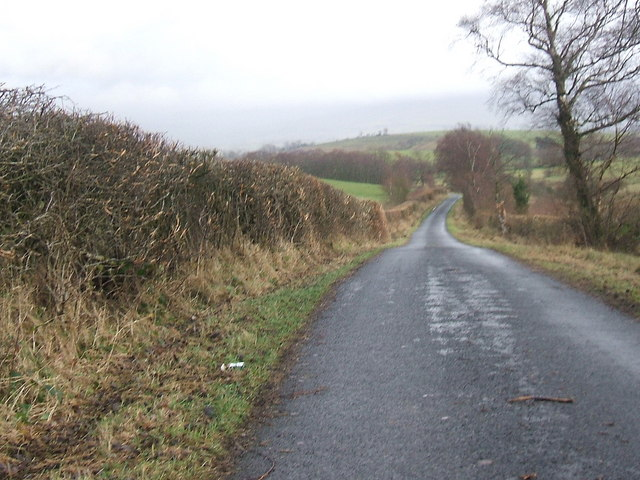 The road to Little Musgrave
