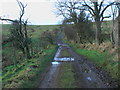 NU0221 : Track heading for Roseden Edge by ian shiell