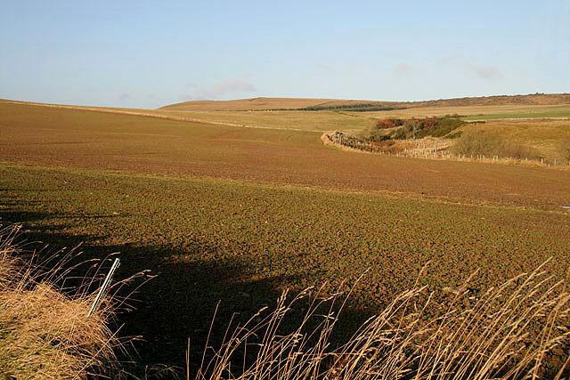Farmland at Holy Dean