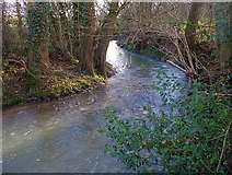 SO7334 : The Glynch Brook near Clencher's Mill by Bob Embleton