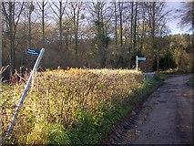 SO7334 : Public footpath signs, Clencher's Mill by Bob Embleton