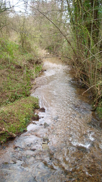 A pretty stream on the way to Northwood Green.