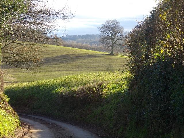 The road to Bromesberrow