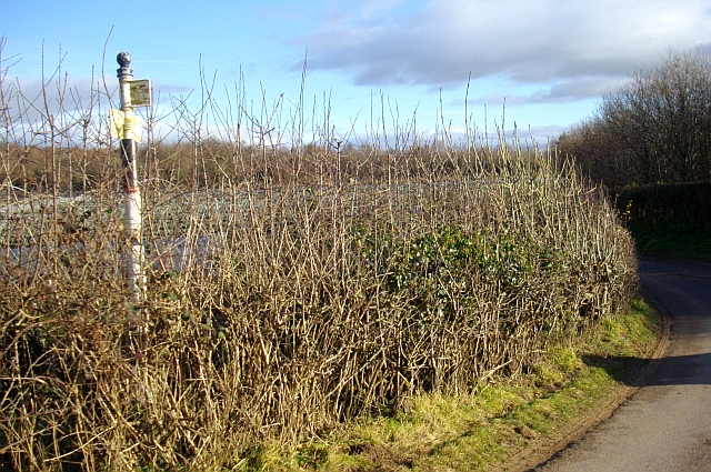 The remains of an old road sign near the Pepper Mill