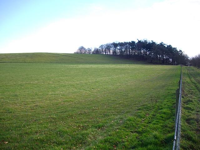 Pasture and path, Bromesberrow