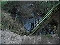 NU1416 : Eglingham Burn at Shipley bridge by ian shiell