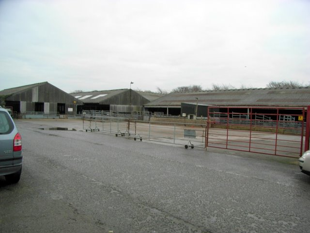 Northallerton Auction Mart