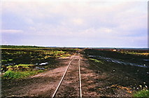 N1417 : Bog railway at Lumcloon, Co. Offaly by Kieran Campbell