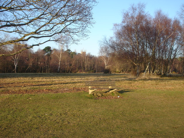 Shedfield Common