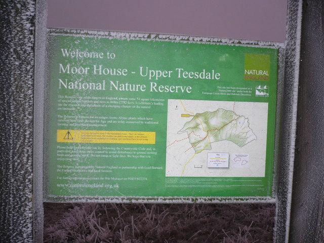 Natural England sponsored sign near Tees Head