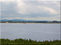 NU2135 : Bamburgh from Inner Farne by Andy F