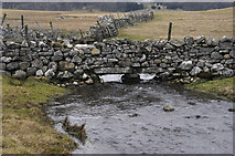 SD8965 : Malham Water between the tarn and Water Sinks by Tom Richardson