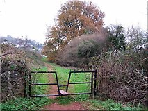 SX8760 : Footpath in Great Parks by Richard Dorrell
