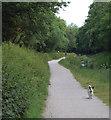 SX0048 : Pentewan valley footpath by Andy F