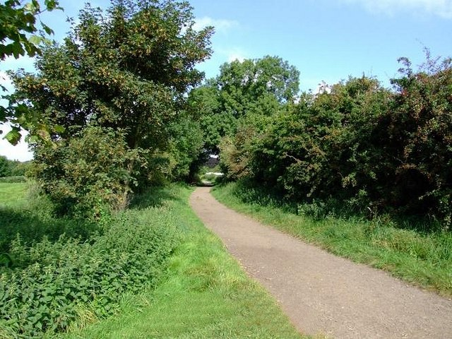 Trent Lane by the gate to the meadows