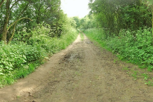 Trent Lane looking East towards Bulcote & Gunthorpe
