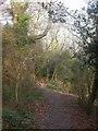 SZ2293 : Chewton Bunny, footpath by Mike Faherty