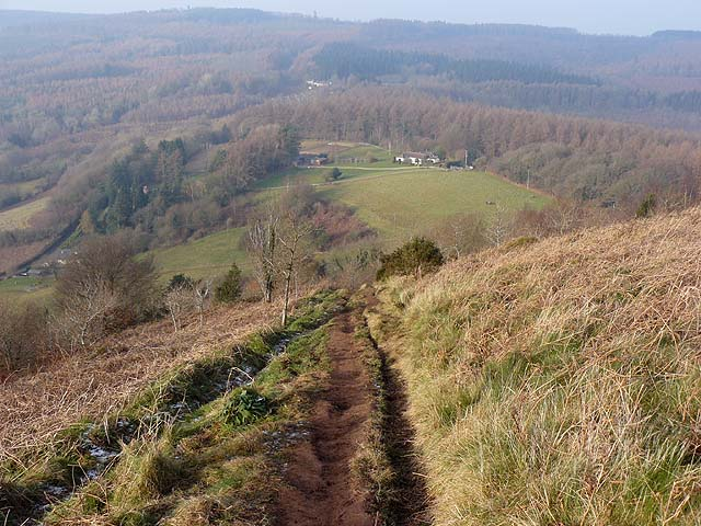 Path up to Gray Hill, Wentwood