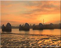 TQ4179 : Sunrise over The Thames Barrier by Ian Dalgliesh