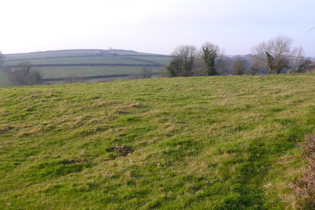 Countryside near Piddlehinton