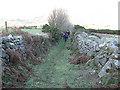 S8147 : Green Lane by kevin higgins