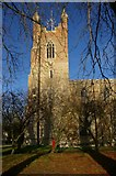 TL4568 : Cottenham church tower by Tiger