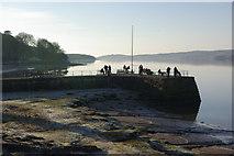 SD4578 : Arnside Pier by Stephen McKay