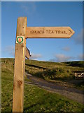 NY7844 : Isaac's Tea Trail sign by Roger Morris
