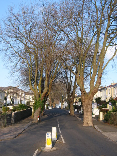 Bampfylde Road Torquay
