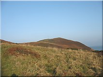 SH4094 : Open access land leading to the Torllwyn headland by Eric Jones