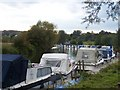 TQ6952 : River Medway towards Wateringbury by David Anstiss