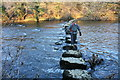 NY6721 : Stepping Stones Across the River Eden by Bob Jenkins