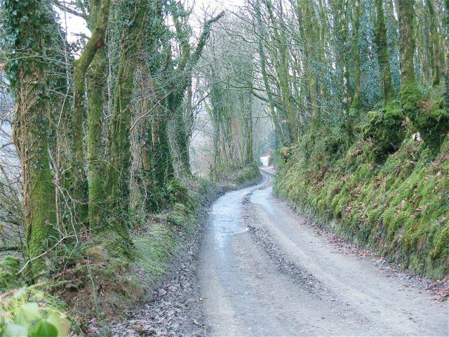The lane to Skanda Vale