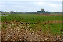 TM5075 : Southwold Town Marshes by Graham Horn