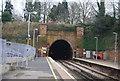 TQ5839 : Grove Hill Tunnel by N Chadwick