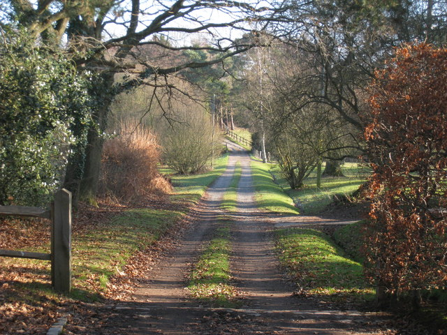Track from Nettlesworth Place