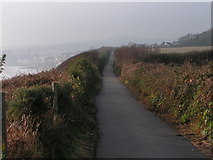 SX9777 : Cycle path between Dawlish Warren and Dawlish by Rob Purvis