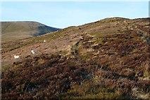 SO0820 : Approaching Twyn Du by Graham Horn