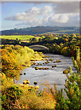 NZ1064 : The River Tyne above Hagg Bank Bridge by Andrew Curtis