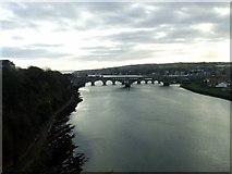 NT9953 : River Tweed at Berwick Upon Tweed by Thomas Nugent