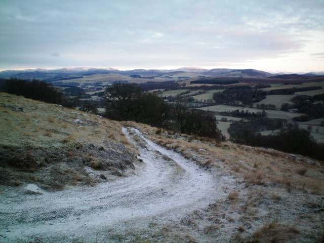 Track above Woodhill