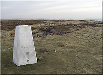 SE0030 : Trig pillar on High Brown Knoll by michael ely