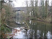 TQ0487 : River Colne at Denham railway viaduct by Nigel Cox