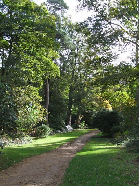 A path in Sheringham Park