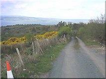 G9816 : Minor road above Lough Allen by Oliver Dixon