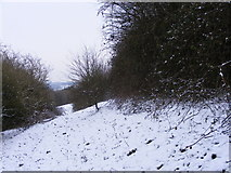 SO9194 : Snowy Hillside by Gordon Griffiths