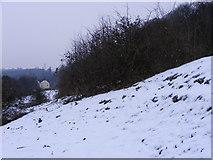 SO9194 : Snowy Path to the Farm by Gordon Griffiths